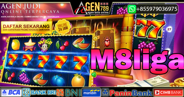 M8liga